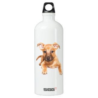 かわいい子犬 ウォーターボトル