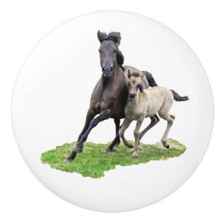 かわいい子馬のギャロップの写真を持つ野生のDulmenの馬のロバ セラミックノブ