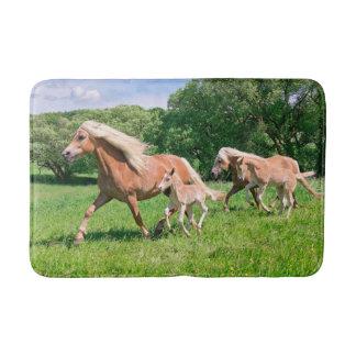 かわいい子馬を持つHaflingerの馬はおもしろいな写真を走ります、 バスマット