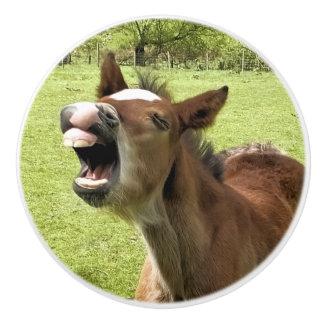 かわいい子馬 セラミックノブ