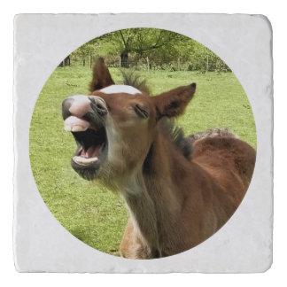 かわいい子馬 トリベット
