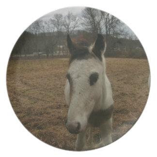 かわいい子馬(ベビーの馬) プレート