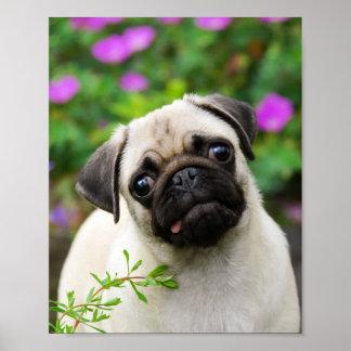 かわいい子鹿のパグの子犬 ポスター