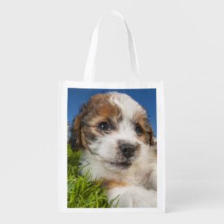 かわいい小犬(Shitzu) エコバッグ