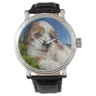 かわいい小犬(Shitzu) 腕時計