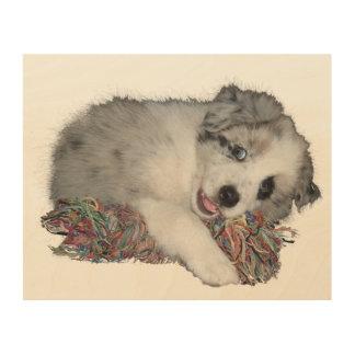 かわいい少しボーダーコリーの子犬 ウッドウォールアート