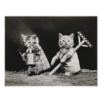 かわいい服を着せられた猫のヴィンテージポスター ポスター