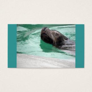 かわいい水泳のアシカ 名刺
