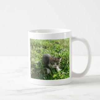 かわいい灰色の子ネコ コーヒーマグカップ