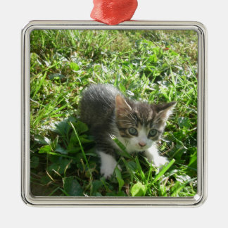かわいい灰色の子ネコ メタルオーナメント