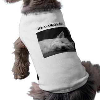 かわいい犬のTシャツ ペット服