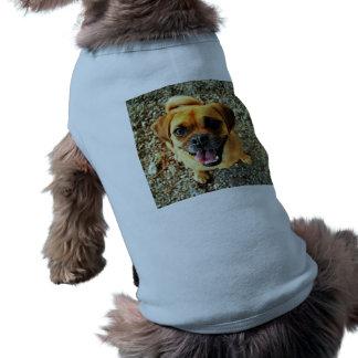 かわいい犬 ペット服