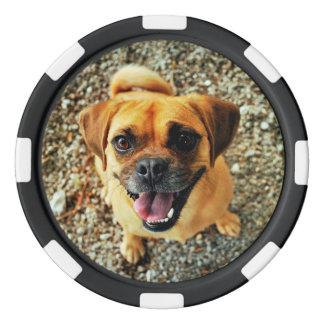 かわいい犬 ポーカーチップ