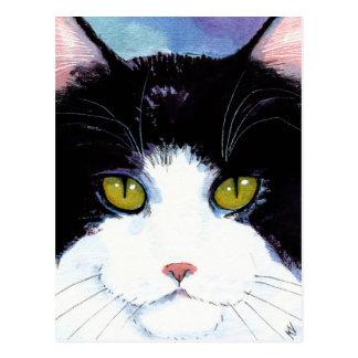 かわいい猫の黒く及び白いタキシードのメインのあらいぐまの郵便はがき ポストカード