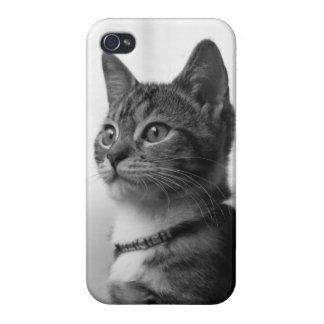 かわいい猫 iPhone 4 CASE