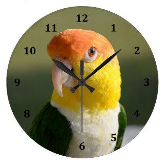 かわいい白によって膨らまされるシロハラインコのオウム ラージ壁時計