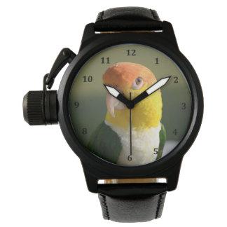 かわいい白によって膨らまされるシロハラインコのオウム 腕時計