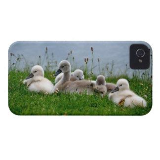 かわいい白鳥のベビー- iPhone 4カバー Case-Mate iPhone 4 ケース