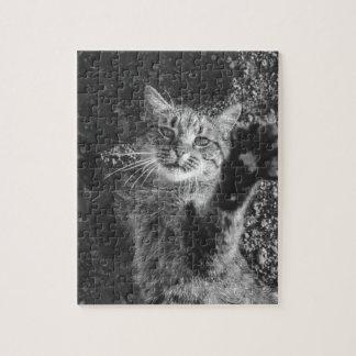 かわいい白黒猫の抱擁 ジグソーパズル