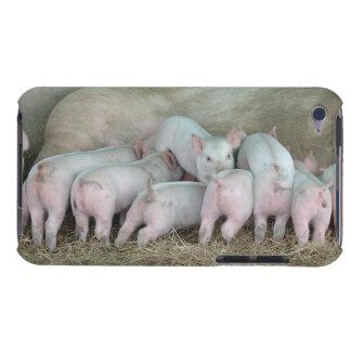 かわいい看護のコブタ-彼女のベビーのブタを持つ雌豚 Case-Mate iPod TOUCH ケース