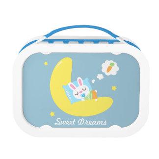 かわいい睡眠の月のランチボックスの小さいベビーのバニー ランチボックス