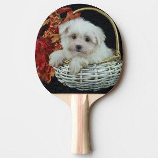 かわいい秋の子犬 卓球ラケット