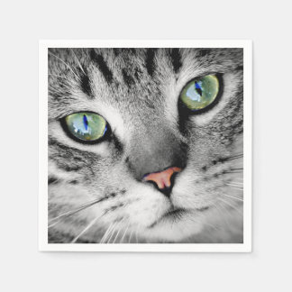 かわいい緑色の目の猫のポートレート スタンダードカクテルナプキン