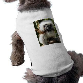 かわいい茶色および白い猿ペット衣類 ペット服