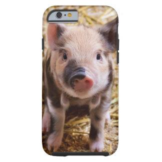 かわいい赤ん坊のコブタのiPhone6ケース iPhone 6 タフケース