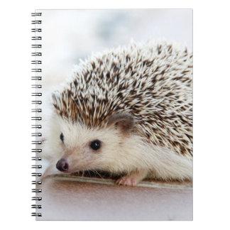 かわいい赤ん坊のハリネズミ ノートブック