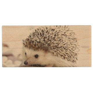 かわいい赤ん坊のハリネズミ 木製 USBメモリー