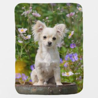 かわいい長髪のクリーム色のチワワ犬の子犬ペット写真 ベビー ブランケット