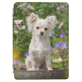 かわいい長髪のクリーム色のチワワ犬の子犬ペット写真 iPad AIR カバー