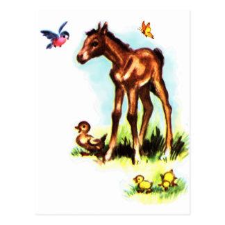 かわいい馬の子馬のベビーの子馬 ポストカード