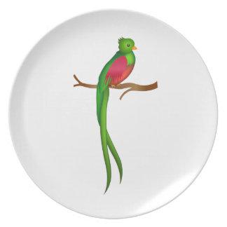 かわいい鳥のQuetzal プレート