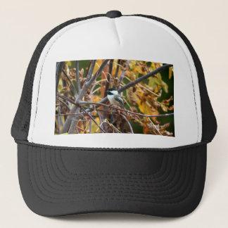 かわいい黒おおわれた《鳥》アメリカゴガラの写真 キャップ
