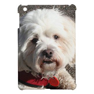 かわいいbichonのfrise犬 iPad miniケース