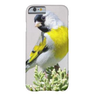 かわいいGoldfinchの鳥 Barely There iPhone 6 ケース