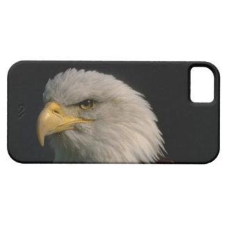 かわいいiPhone 5のケースの美しいアメリカのワシ iPhone SE/5/5s ケース