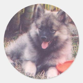 かわいいKeeshondの子犬 ラウンドシール