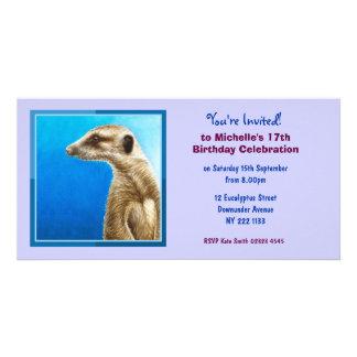 かわいいMeerkatの誕生日の招待状の写真カード カード
