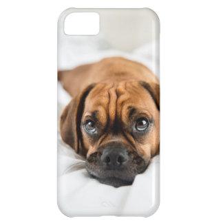 かわいいPuggle犬の例 iPhone5Cケース