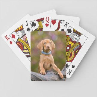"""かわいいpuppyeyedハンガリー人のVizsla犬の子犬の写真/"""" トランプ"""