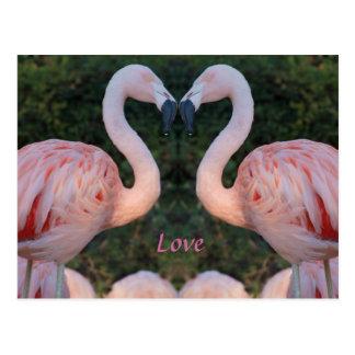 かわいくキスをするなフラミンゴの写真撮影 ポストカード