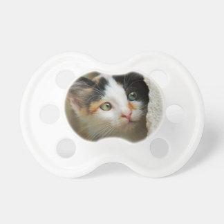 かわいく好奇心が強い猫の子ネコの詮索好きな目のヘッド写真ペット おしゃぶり
