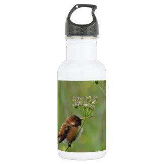 かわいく小さいハチドリ ウォーターボトル