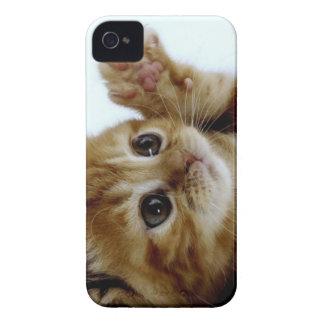 かわいく小さい子ネコ猫ペットショウガの虎猫 Case-Mate iPhone 4 ケース