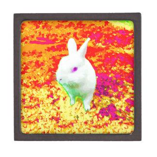 かわいく白いペットウサギのピンクの目 ギフトボックス