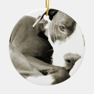 かわいく眠く不精なピット・ブル犬 セラミックオーナメント