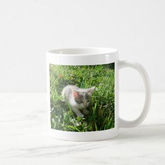 かわいく若い子ネコ コーヒーマグカップ